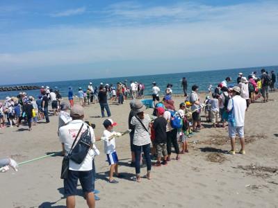 「水橋地曳網体験と漁師文化を学ぶ」開催いたしました。(2019.8/3)