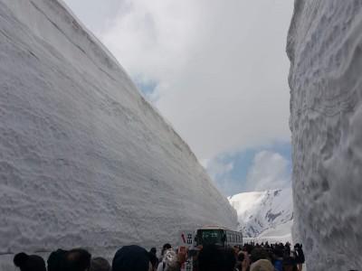 立山室堂アルペンルートツアー往復バスで待たずに室堂へ!雪の大谷見学フリープランを実施いたしました。(2019.5/3-5/4)